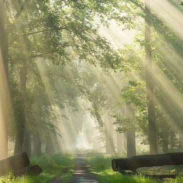 side-rays-landscape-photography